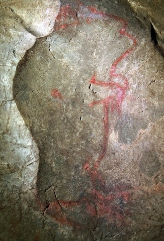 Vertical bisons: was cave-painting a form of shamanism?